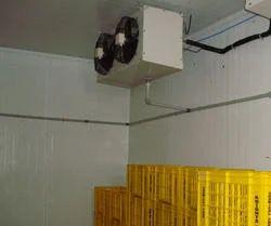 Fruit Mango Cold Storage Room, 1.5 Kw, Capacity / Size Of Storage: 5 Mt-5000 Mt