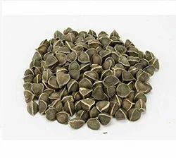 Dried Drumstick Seeds