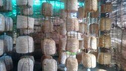 Mushroom Types & Cultivation MUSHROOM CULTIVATION TRAINING SESSION