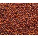 Indian Organic Red Gram Seeds, No Preservatives