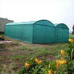 Net Shed Poly House Services