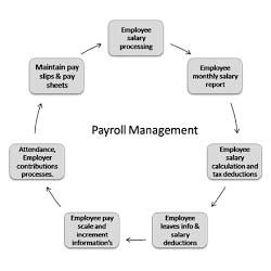 College Payroll Management System in Jasola, New Delhi