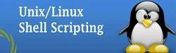 Unix Shell Scripting (30 Hours)
