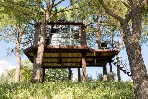 tree house resort. Tree House Resort