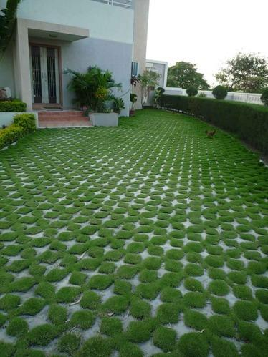 Grass Pavers Turf Cobbles Pebbles Amp Pavings Vyara