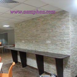 Wall Stones Tiles Design