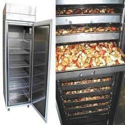 Fruit Or Vegetable Drying System