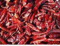 Dried Chilly