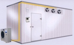Commercial Cold Storage Chamber