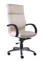 Stylish Director Chair