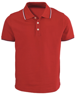 Men s Tipped Polo T-Shirt at Rs 275  piece(s)  536f4f1a8934