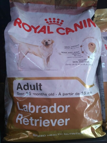 Pedigree Meat And Rice and Royal Canin Adult Dog Food
