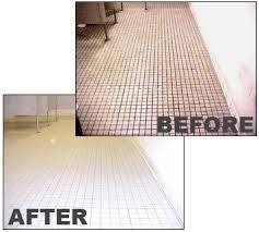 Floor Cleaner and Drain Cleaner