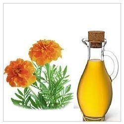 Tagetus Oil