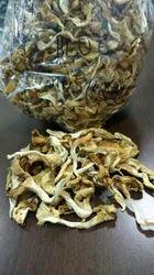 Florida Dried Mushroom