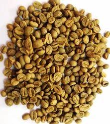 Green Coffee Beans In Chennai Tamil Nadu Green Coffee Beans