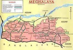 Pharmaceutical Marketing Service in Meghalaya