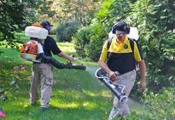 Outdoor Pest Control