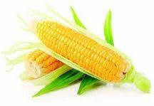 Organic Sweet Corn Corn Flakes