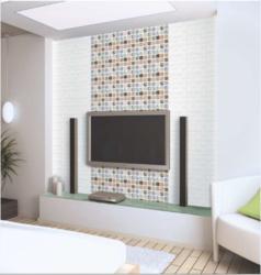20 x 20 Digital Wall Tiles