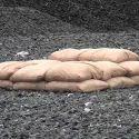 Blastsax Lightweight Sand Bag