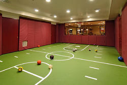 Green Pvc Indoor Sports Courts