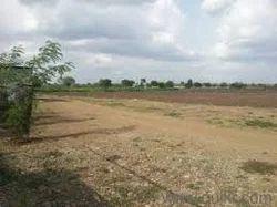 Land On Rent
