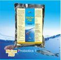 Fish Probiotic