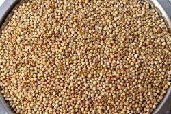 Agro Jowar