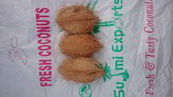 A Grade Coconut, Coconut Size Available: 350 - 700 grm, Packaging Size: 13.5 Kg /bag
