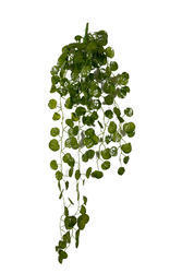 Artificial Green Foliage