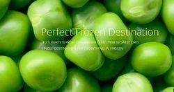 Perfect Frozen Destination