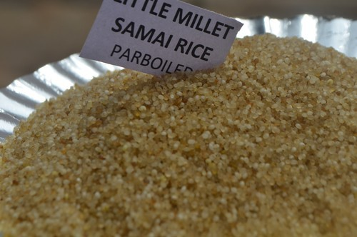 Little Millet Parboiled ( Samai Millet Rice ) Milletindia