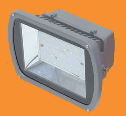 30 Watt Flood Light