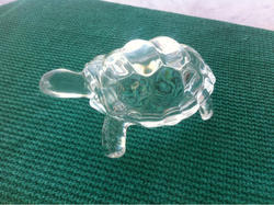 Glass Tortoise