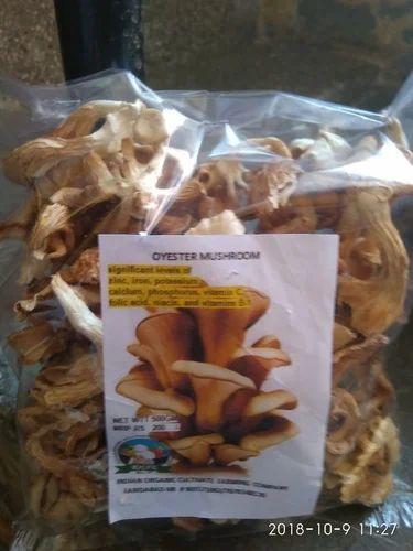 IOCFC - Fresh Oyester Mushroom Manufacturer from Faridabad