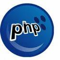 Dynamic Web Design/Development Services