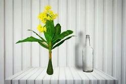 Hyperboles Artificial Flower Plant