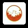 Phoenix Enterprises