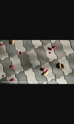 Zigzag Paver Blocks