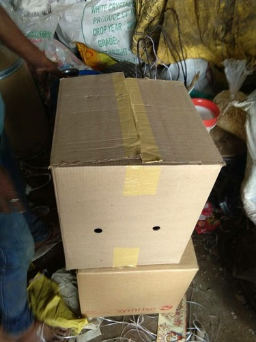 12*12*16 Corrugated Boxes