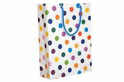 Arrow Paper Products Return Gift Bag