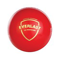 SG Everlast ( Synthetic) Cricket Ball