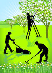 Garden Maintenance in Ahmedabad