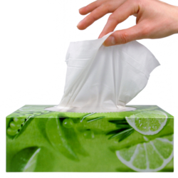 Restaurant Industry Tissues