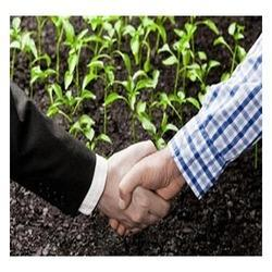 Agriculture Consultancy Service