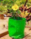 Reusable Grow Bag