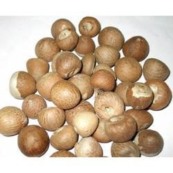 Betel Nuts Testing Services