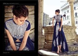 Heavy Embroidery Work Suit