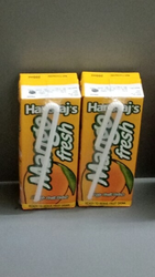 Terra Package Mango Juice
